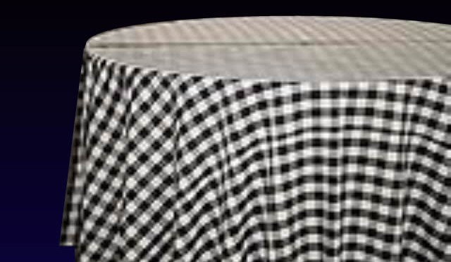 Gingham Black/White Check