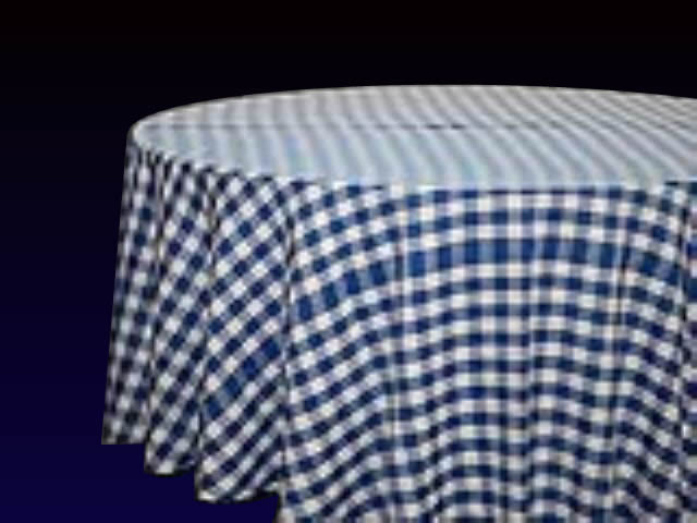Gingham Blue/White Check