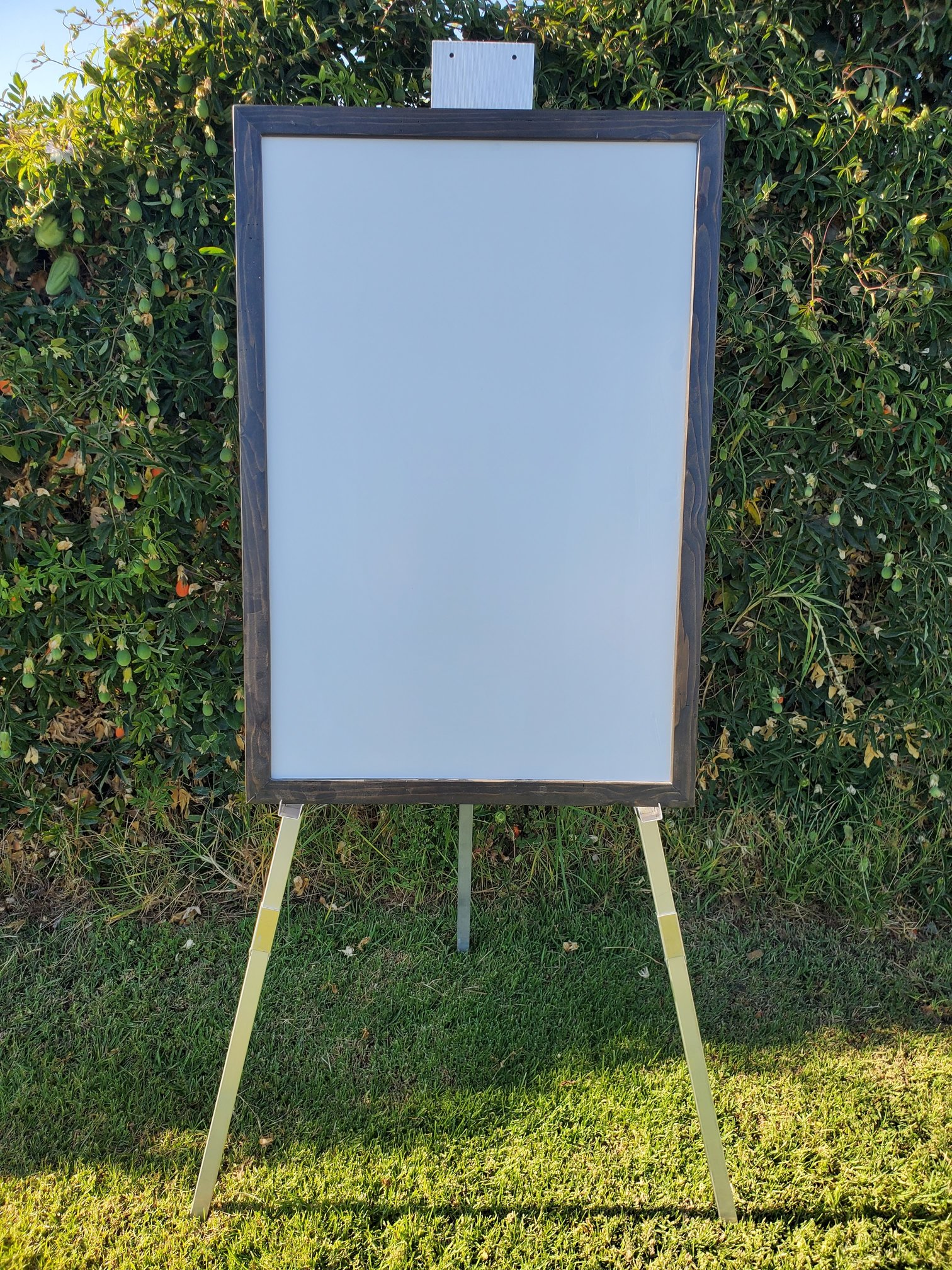 whiteboard, easel, giant backyard game rental